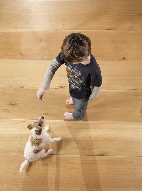 dog and boy floor